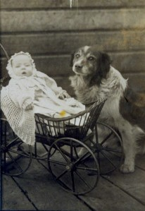 Baby and dog on boardwalk at Five Points