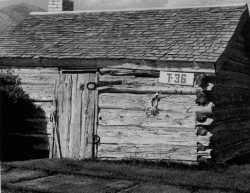 Cabin of Daniel F. Thomas was located by building 10A of DDO.