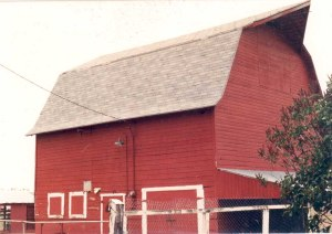 Arch Clapier barn; photo c. 1980, courtesy Connie Clapier.
