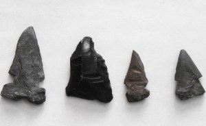 Sample of arrowheads found in the fields of the Bingham/Sone Farm.