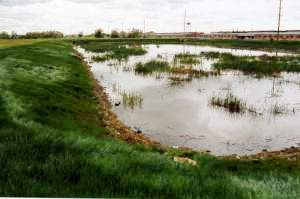 West holding pond in 2005.